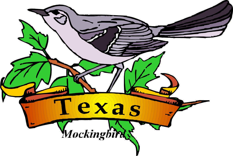texas theme u2014 day camp shac